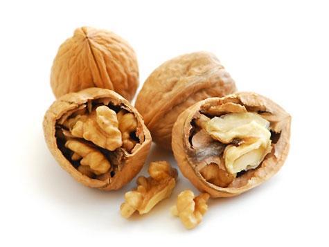 Obrázek ke článku vlašský ořech ořešák vlašský ořešák